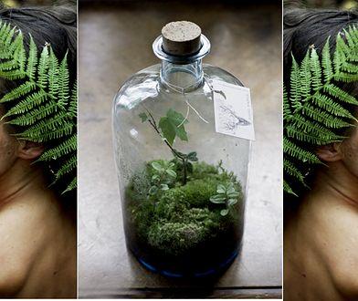 Zamyka las w szklanej butelce. Niezwykła sztuka Justyny Stoszek