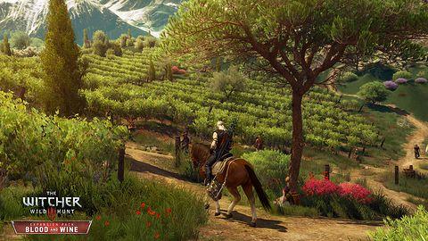 Wiedźmin 3: Krew i Wino – gramy w 1080p na taniej karcie graficznej