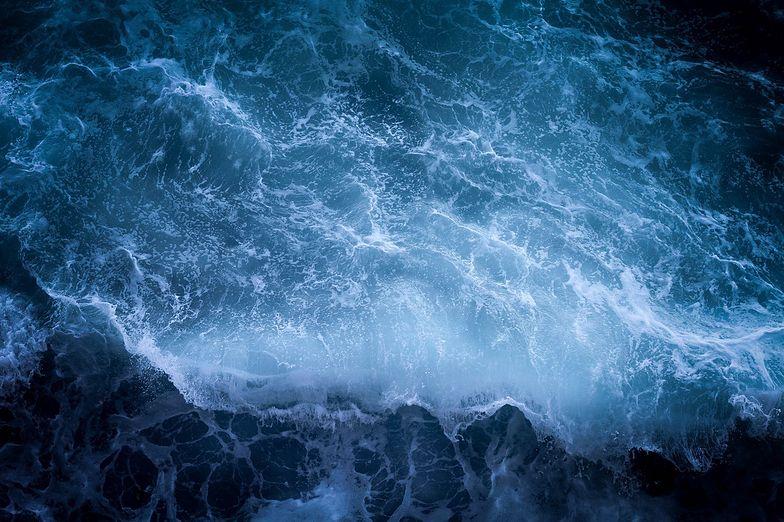 Alarm! Niepokojące doniesienia o Bałtyku