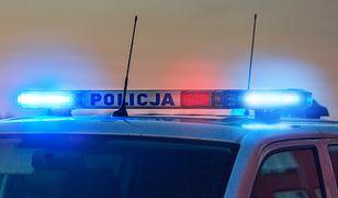 Policja szukała zbiegów z psem tropiącym