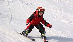 Zawody o Puchar Krecika - slalom gigant