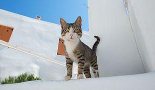 Do Grecji po sezonie wabią atrakcyjne ceny i piękne widoki