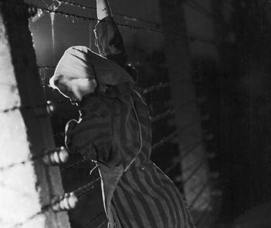"""Cilka Klein była przyjaciółką """"Tatuażysty z Auschwitz"""""""