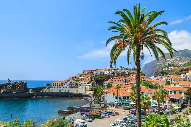 Wczasy na Maderze - powód nr 1: wiosenne tempeartury przez cały rok