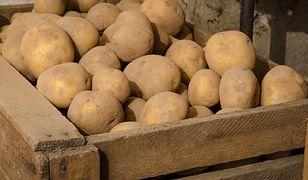 Tegoroczne ceny jabłek i ziemniaków są znacznie wyższe, niż w zeszłym roku.