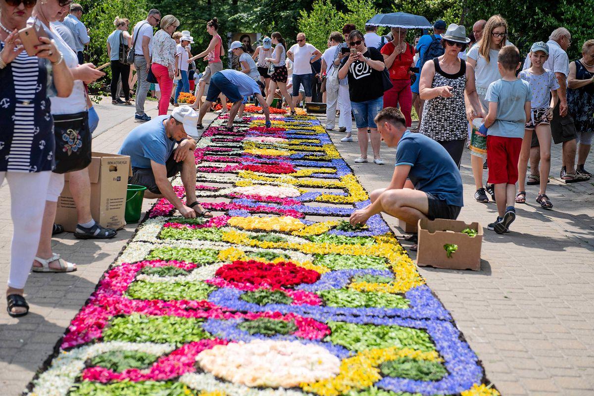 Lista UNESCO. Chcą wpisać dywany kwiatowe i sokolnictwo