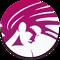 Vellamo Mobile Benchmark icon