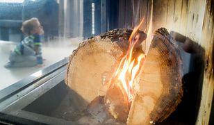 Nie wszędzie i nie zawsze będzie można cieszyć się widokiem palących się w kominku drewien.