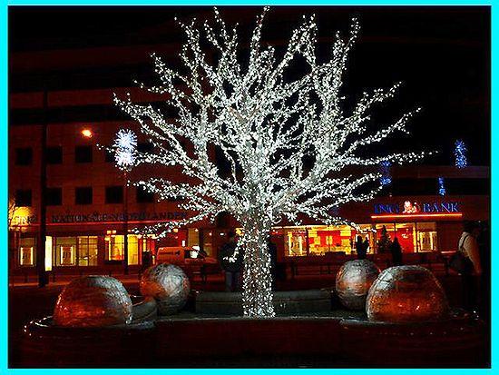 Iluminacje we Wrocławiu - zdjęcia Internauty