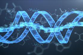 Genom – co wiemy o kompletnym zestawie informacji genetycznej?