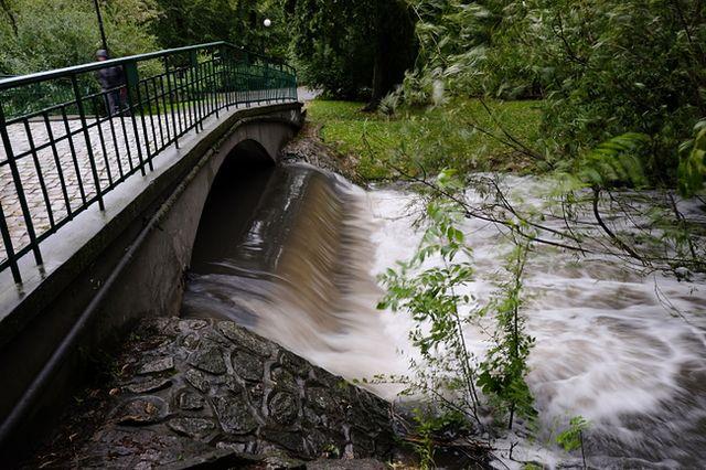 Rzeka Bogdanka w Parku Sołackim w Poznaniu przelewa się przez przepust wodny