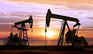 USA – ceny ropy podyktuje huragan Michael