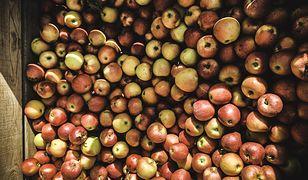 Polska jest jabłkowym potentatem. Ale i inne owoce są w naszym kraju stosunkowo tanie