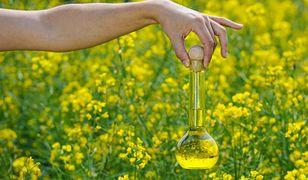 Olej konopny znalazł zastowanie nie tylko w kuchni, ale również w kosmetyce