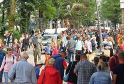 Turyści w Zakopanem. Bójki o parking, awantury w hotelach i alkohol