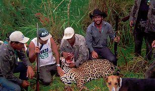 Mężczyźni nielegalnie od wielu lat zabijali zagrożone gatunki zwierząt