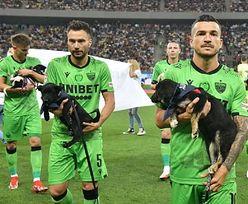 Wyszli na mecz z psami. Ten gest obiegł świat