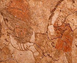 Niezwykłe odkrycie w kolebce cywilizacji