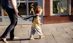 Jasio na smyczy — kontrowersyjna metoda na upilnowanie dziecka. Rodzice kontra psychologowie