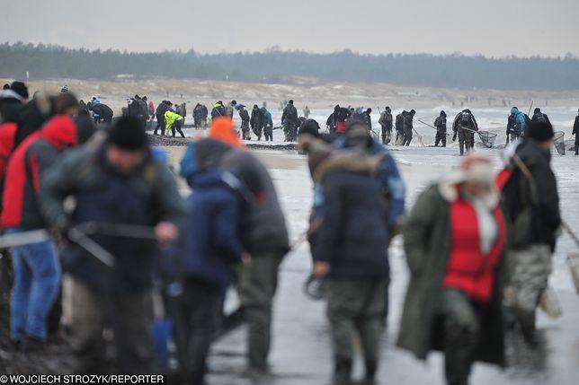 """""""Prawdziwy szał"""" po sztormie. Tłumy szukają """"złota Bałtyku"""" na plażach"""