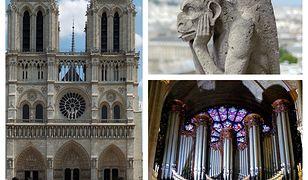 Katedra Notre-Dame ma bogatą historię i wnętrze