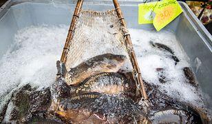 Sprzedaż żywych karpi budzi wiele kontrowersji