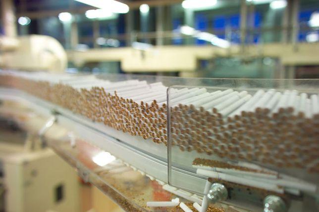 Nikotyna może pomóc palaczom rzucić palenie. O ile palacze zrezygnują z tradycyjnych papierosów