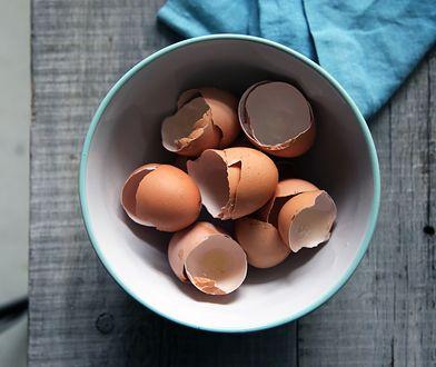 Jak wykorzystać skorupki po jajkach? Poznaj 8 nietypowych zastosowań