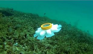 Robot porusza się jak meduza