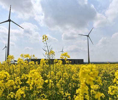 Według badania IBRiS większość Polaków uważa, że główną przyczyną zmian klimatu jest działalność człowieka
