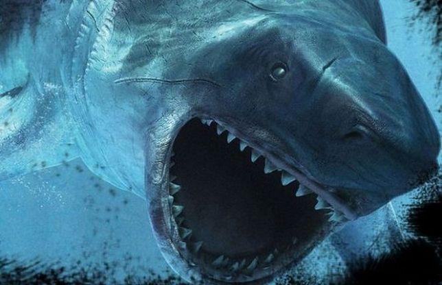 Prehistoryczne stwory morskie na PGE Narodowym
