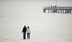 Lód w zatoce