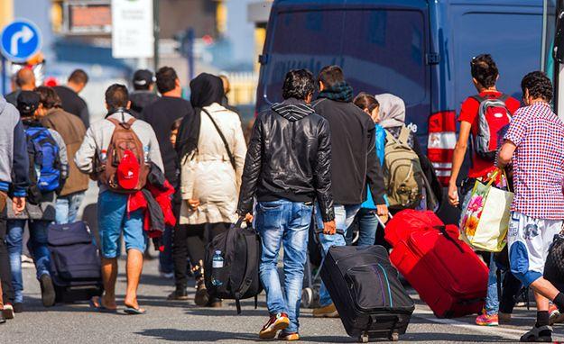 Austria zbuduje płot na granicy ze Słowenią