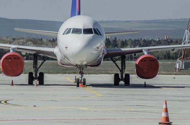 LOT, Wizz Air, Ryanair wznawiają połączenia. Kiedy i gdzie będzie można latać samolotem?