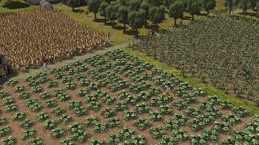 W Banished patrzenie jak zboże rośnie może być fascynujące - od tego zależy los całej wioski