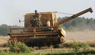 GUS bije na alarm. W Polsce postępuje zakwaszenie ziemi