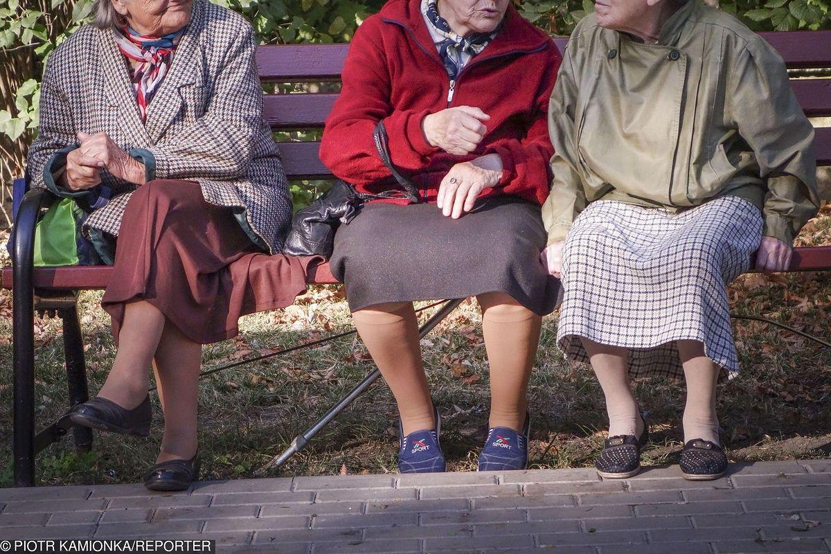 """Najwyższe emerytury w Polsce. Jest sposób na """"godne"""" pieniądze, ale bardzo ryzykowny"""