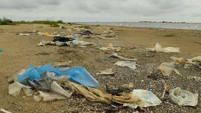 Plaża w rezerwacie Mewia Łacha pełna śmieci wyrzuconych przez morze