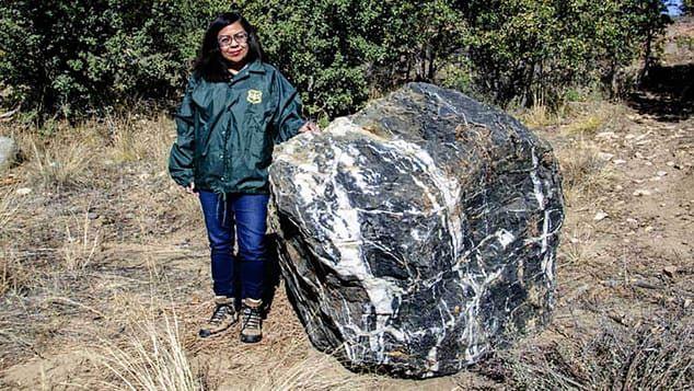 USA. Ogromny kamień w tajemniczy sposób znikł z parku. W taki też sposób powrócił na miejsce