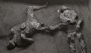 Niezwykłe odkrycie w Pompejach
