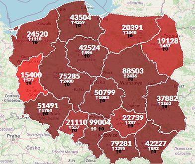 Koronawirus w Polsce. Mapa zakażeń