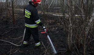 Strażacy dogaszają ogień na składowisku odpadów w Pyszącej