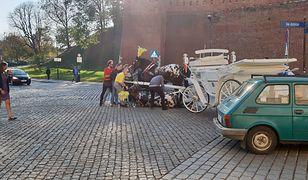 Kraków: upadł koń ciągnący dorożkę z turystami. Przechodnie ratowali zwierzę.
