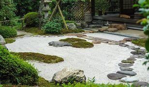 Jakie kamienie i do czego wykorzystuje się w ogrodzie?