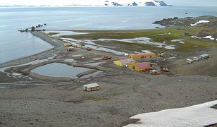 Polska Stacja Antarktyczna im. H. Arctowskiego, znajdująca się na Wyspie Króla Jerzego w archipelagu Szetlandów Południowych