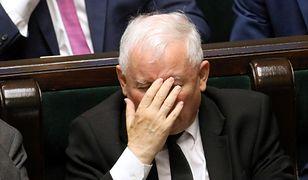 Jarosław Kaczyński lwem z cierniem w łapie - pisze Jakub Majmurek