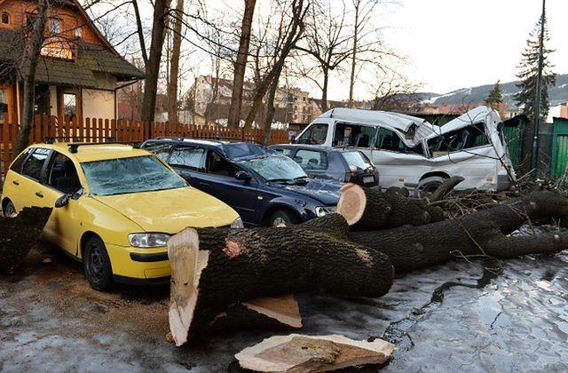 Powalone drzewa, zniszczone auta - zdjęcia
