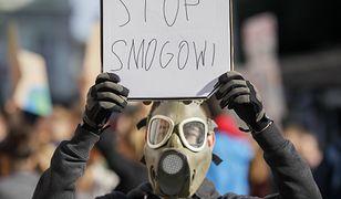 Młodzieżowy strajk klimatyczny w Lesznie