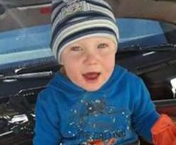 Zaginięcie 3,5-letniego Kacperka. Psy z Niemiec wskazały trop