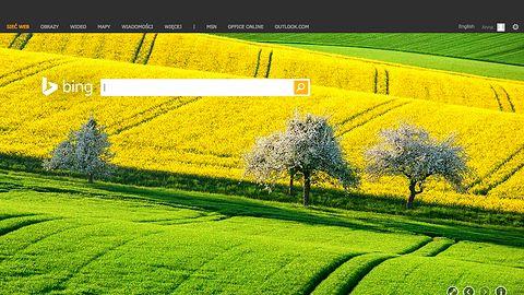 Bing pokaże prawa autorskie obrazów i pomoże zrobić zakupy